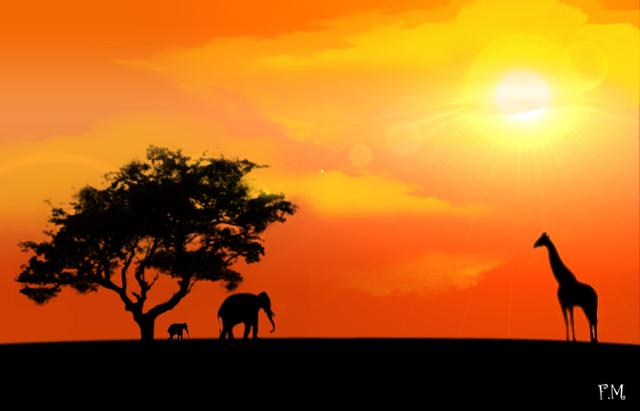 photo-photo-paysage-afrique-2