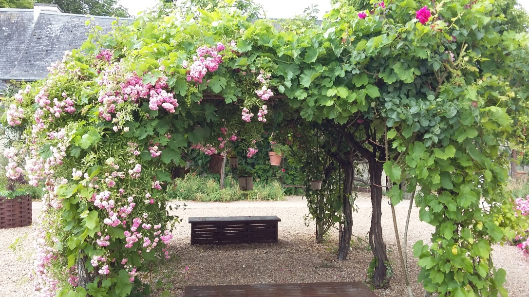 fleurs Rivau