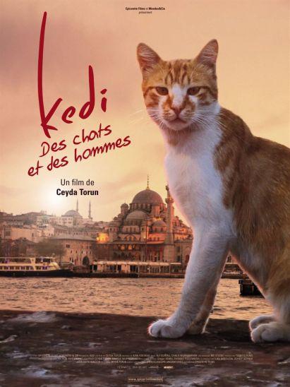 Kedi_Des_Chats_et_des_Hommes
