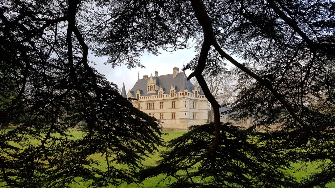 chateau arbres