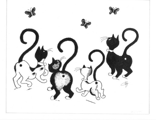 chats papillons