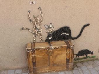 chat île penotte